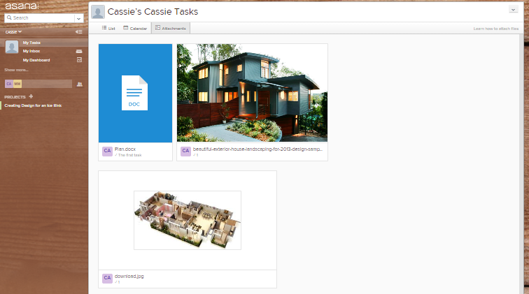 Asana file viewer screenshot